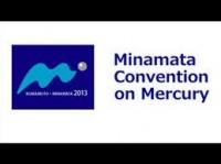 Brasil promulga a convenção de Minamata para eliminar o uso do mercúrio