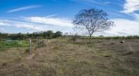 Amda envia plataforma ambiental aos candidatos ao governo de Minas Gerais