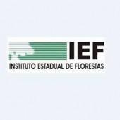 INSTITUTO ESTADUAL DE FLORESTAS COMPLETA 58 ANOS