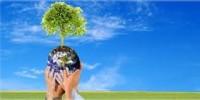 Copam define lista tríplice para ouvidor ambiental