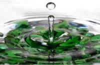 Processo de gestão das águas em Minas Gerais