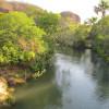 Proposta delega aos municípios a decisão sobre preservação das margens de rios