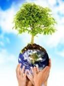Resolução Semad escolhe Ouvidor Ambiental