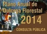 Serviço Florestal Brasileiro abre consulta pública