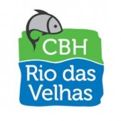 100ª Reunião Plenária do CBH Rio das Velhas acontecerá em Belo Horizonte