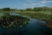 Edital financia projetos na Bacia do Rio Pandeiros