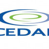 Privatização da Cedae será dividida em quatro blocos de municípios