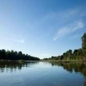 Governo seleciona organizações para estruturar Comitês de Bacias em MG