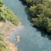 Agência Peixe Vivo assina contrato para a elaboração do Manual Operativo do Plano da Bacia Hidrográfica do Rio Verde Grande