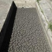 UFMG e Copasa pesquisam transformação do lodo de esgoto em fertilizante