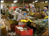 Feam seleciona municípios que buscam apoio para a coleta seletiva