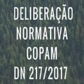 Licenciamento Ambiental - DN 217/2017 Termo de Referência para Relatório Ambiental Simplificado