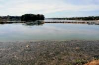 Pampulha terá 800 mil m³ de sedimentos dragados
