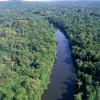 Representantes do agronegócio e ambientalistas lançam campanha em defesa do Código Florestal