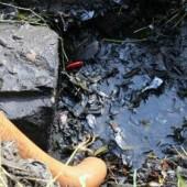 Cerca de 80% da água consumida nas cidades vira esgoto