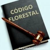 Os 12 vetos ao novo Código Florestal