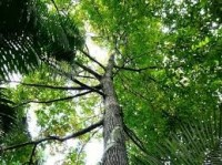 PBH faz palestra sobre licenciamento Ambiental