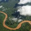 MMA assina recebimento de 96 milhões de dólares para proteger a Amazônia